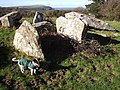 Cerrig y Gof chambered tomb - geograph.org.uk - 202375.jpg