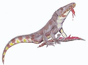 Chasmatosuchus