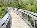 """Chatfield Hollow State Park - """"Paul F. Wildermann Boardwalk""""..jpg"""
