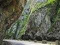 Cheile Bicazului - panoramio.jpg