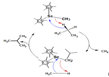what is sigma bond metathesis Sigma bond metathesis involves the formation of new c-h and metal-carbon bonds, where the metals are typically in the d 0 configuration starting with a metal alkyl.