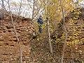 Cherkas'kyi district, Cherkas'ka oblast, Ukraine - panoramio (387).jpg