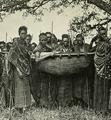 Chifu Kaware safarini (Kandt 1904 II, 97) cropped.png