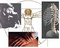 Pastiche of man thinking and writing; the ribs, vertebrae, and hip bones of a human skeleton; a hand holding another; and Leonardo's famous drawing of a man in square and circle