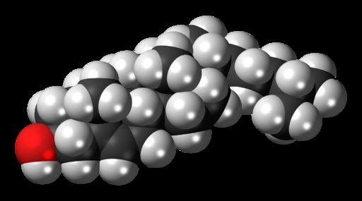 Cholesterol molecule spacefill