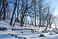 Cimetière du Mont-Royal - panoramio - 4net (4).jpg