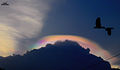 Circumhorizontal Arc at Chennai.jpg