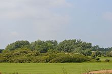 Clacton Cliffs and Foreshore - golf club area 5.jpg