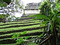 Classic-Era Construction through the Foliage - Palenque Archaeological Site - Chiapas - Mexico (15057799163).jpg