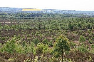 Ash to Brookwood Heaths