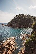 Coastline Life.jpg