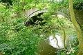 Coley branch line bridge - geograph.org.uk - 1354406.jpg