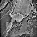 Columbia Glacier, Calving Terminus, Heather Island, August 15, 1984 (GLACIERS 1359).jpg
