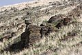 Columbia River Basalt Group 7942.JPG