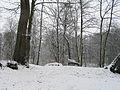 Cormeilles en parisis 47 snow.jpg