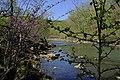 Cossatot River Devil's Den ARK (14267775686).jpg