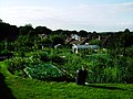 Craggwood Allotments - geograph.org.uk - 1719637.jpg