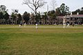 Cricket at Doon.jpg