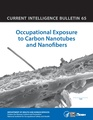Current Intelligence Bulletin 65 - Occupational Exposure to Carbon Nanotubes and Nanofibers.pdf