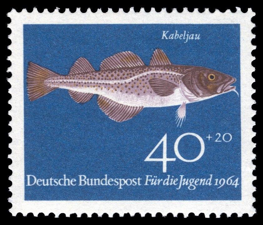 DBP 1964 415 Jugend Kabeljau