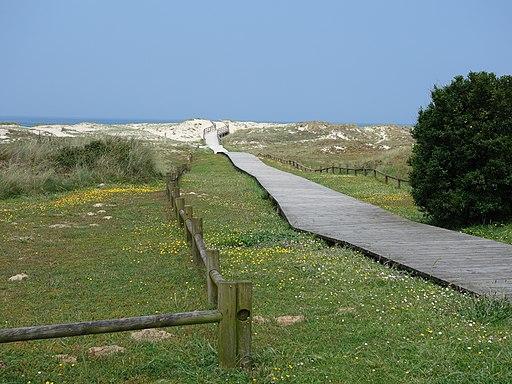 DSC06727 Arteixo Litoral - Praia de Barrañán