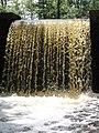Davidson Mill Pond Park, South Brunswick, New Jersey USA July 15th, 2013 - panoramio (19).jpg