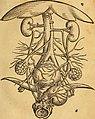 De conceptu et generatione hominis et iis quae circa haec potissimum consyderantur, libri sex (1554) (14770114115).jpg