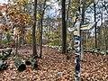 Deer Lake Scout Reservation Totem Pole.jpg