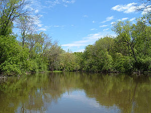 Des Plaines River Lake County Illinois.jpg