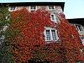 Details in Solothurn (4).jpg