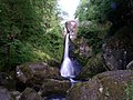 Devil's Glen Waterfall - geograph.org.uk - 287314.jpg