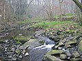 Devil's Water - geograph.org.uk - 1264637.jpg