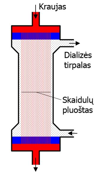 File:Dialyzer LT.png