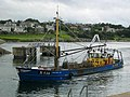 Dingenis Jan - geograph.org.uk - 491563.jpg