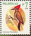 Dinopium javanense 2008 stamp of the Philippines.jpg