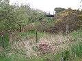 Disused railway line - geograph.org.uk - 1329306.jpg