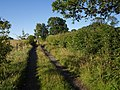 Diverted bridleway - geograph.org.uk - 513433.jpg
