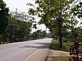Doi Cham Pi - panoramio - CHAMRAT CHAROENKHET (4).jpg