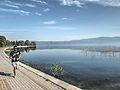 Dojran Lake 23.jpg