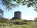 Dolbadarn Castle - geograph.org.uk - 468205.jpg