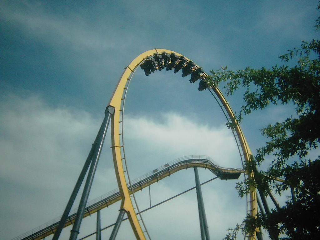 descriptive essay on a roller coaster ride Physics of roller coasters essay physics of roller coasters essay for most of the ride, a roller coaster is moved only by the forces of inertia and gravity.