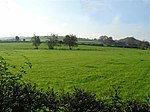 Donaghenry Townland Looking over the green pastureland