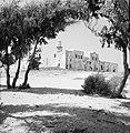 Doorkijkje naar het oude dorp met de Sidna Ali Moskee, Bestanddeelnr 255-2548.jpg