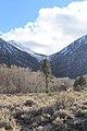 Douglas County - panoramio (36).jpg