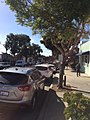 Downtown Morro Bay.jpg