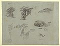 Drawing, Botanical Sketches from South America- a Palm, Groups of Trees, Hanging Twigs, a Big Tree beside a House, and a Flying Crane., 1853, probably May (CH 18191155).jpg