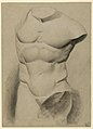 Drawing, Male Torso From a Plaster, 1840 (CH 18566213).jpg