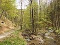 Drobkov - panoramio.jpg