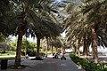 Dubai Children's City, alley - panoramio (1).jpg