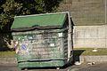 Dumpster roman burned.JPG
